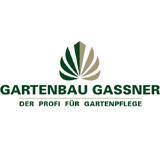 Vorstand blum fc h chst 1921 blum fc h chst 1921 - Gassner gartenbau ...
